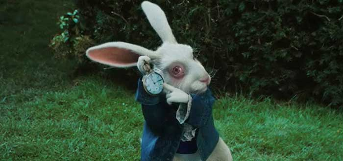 Conejo Blanco Alicia en el País de las Maravillas